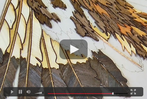 Marquetry Eagle Video