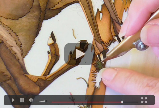 Marquetry Stag Video