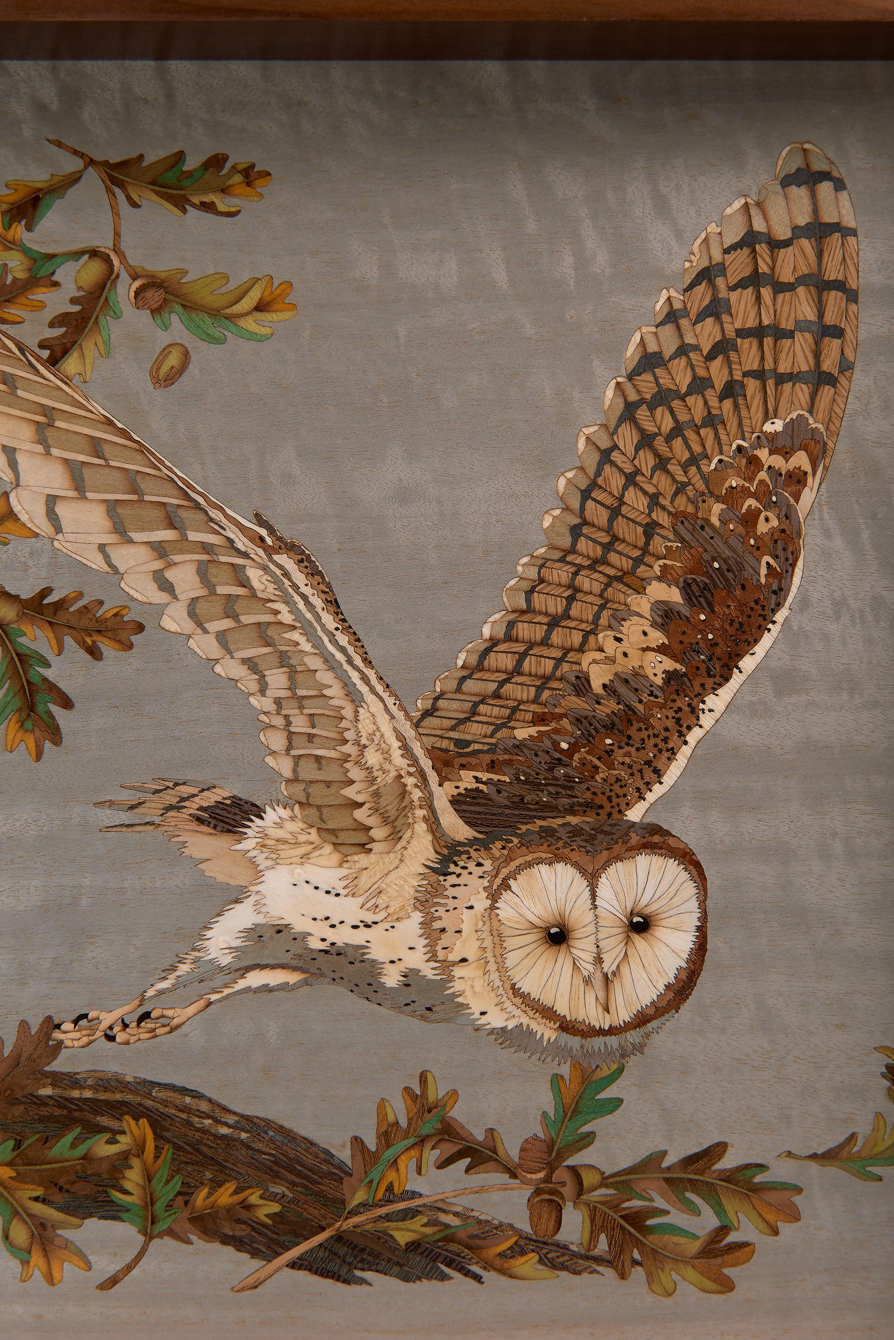 Observant Owl Response